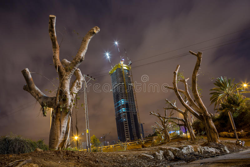 Night in Tel Aviv stock photography