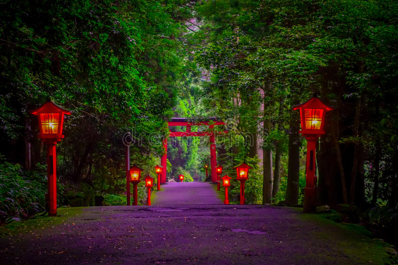 The night view of the approach to the Hakone shrine in a cedar forest. With many red lantern lighted up and a great red. Torii gate royalty free stock photography