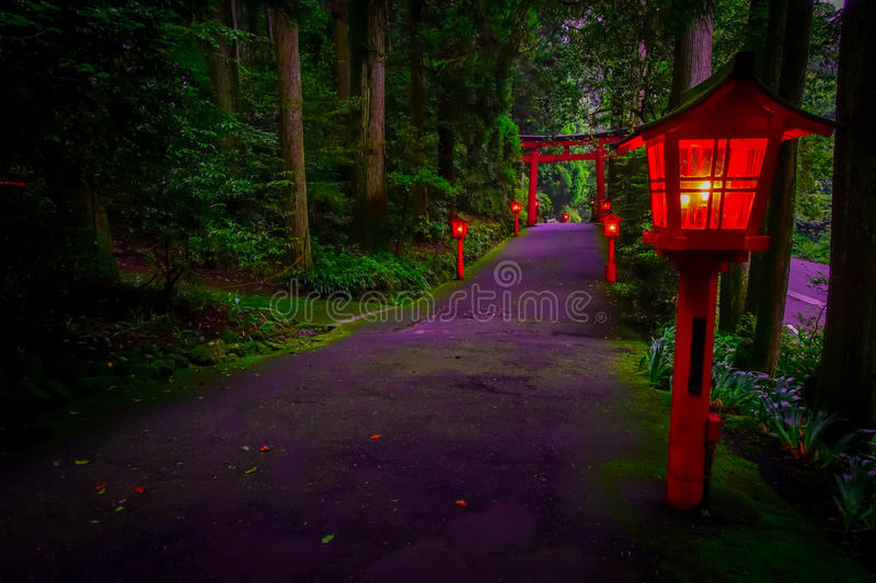 The night view of the approach to the Hakone shrine in a cedar forest. With many red lantern lighted up and a great red. Torii gate stock photo