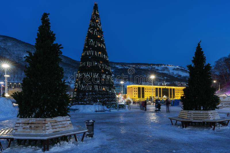 Night view of Christmas tree in snowy town Happy New Year royalty free stock image
