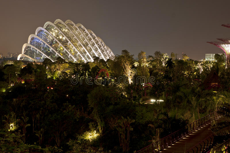 Night View Of Gardens By The Bay Editorial Stock Image
