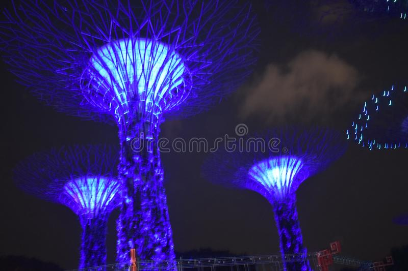Night view of gardens by the bay singapore royalty free stock photo