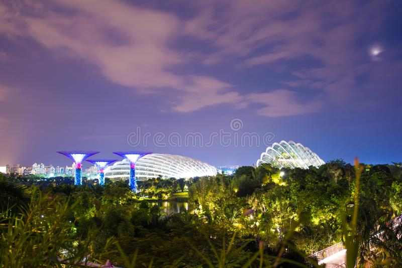 Night view of Super tree garden, Garden by the Bay, Singapore stock images