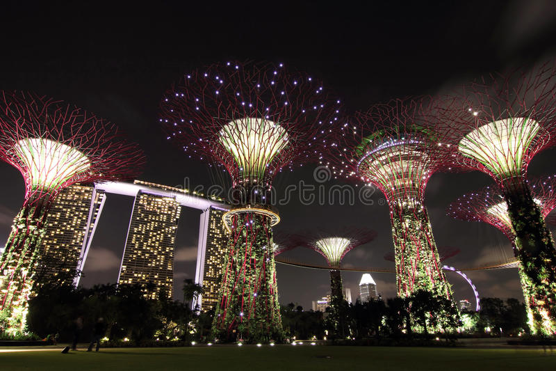 Night View of the Supertree Grove with Marina Bay stock photo