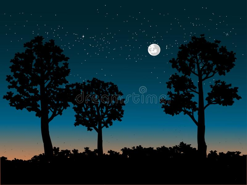 Woods and starry sky royalty free illustration