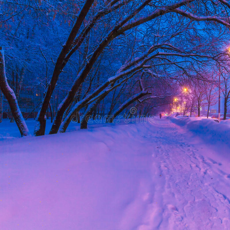 Night view of the winter city royalty free stock photography
