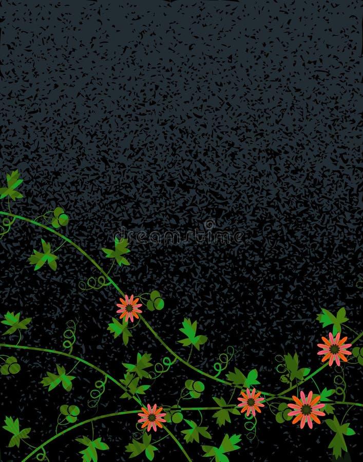 Night vine vector illustration