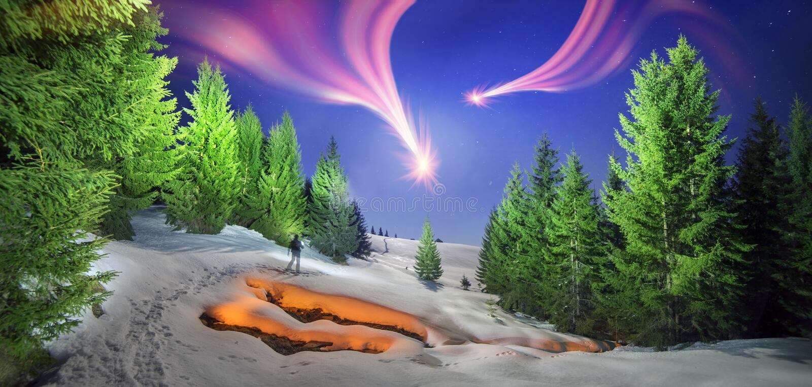 Night walk with fire. Fire on the frozen forest for original photographs of wildlife in the wild Carpathian gorge with clean cold creek on a royalty free stock photos