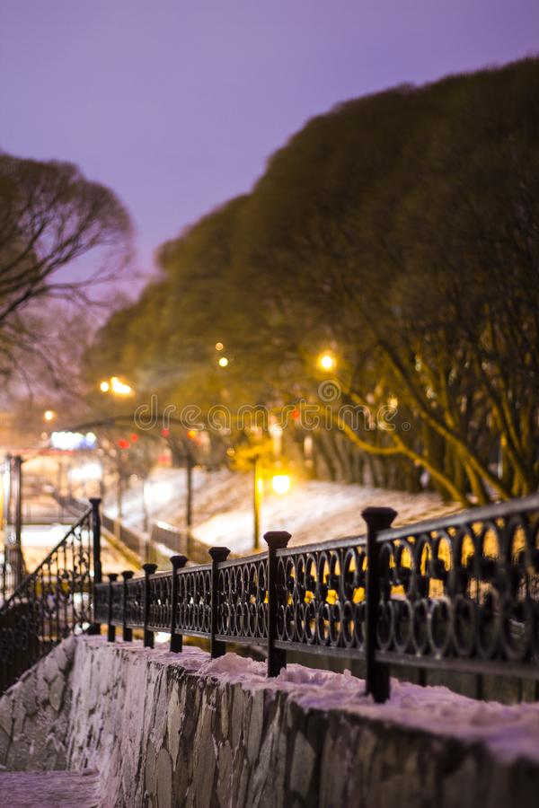 Night winter landscape in the city park. Bridge over the river. Park lights. Willows. Cast iron railings stock image