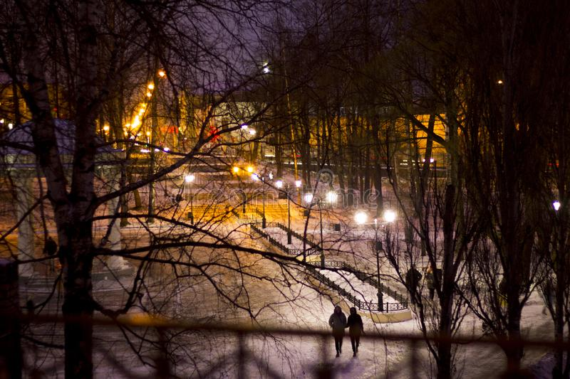 Night winter alley with city lights in park stock photos