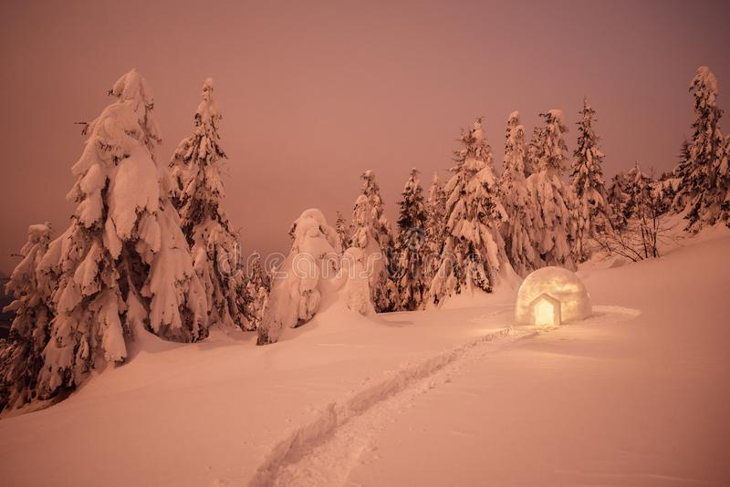 Night winter landscape with snow igloo. Night winter landscape with Eskimo igloo. Spruce forest in the snow royalty free stock photo