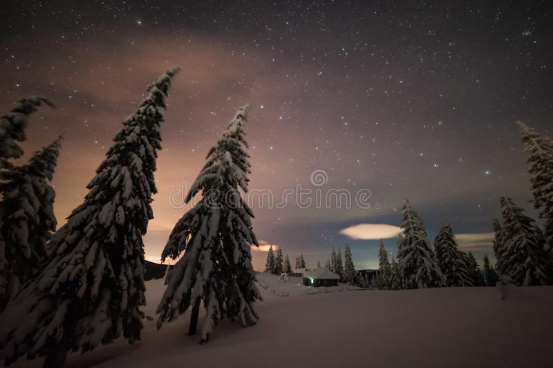 Night winter landscape with snowy forest royalty free stock images