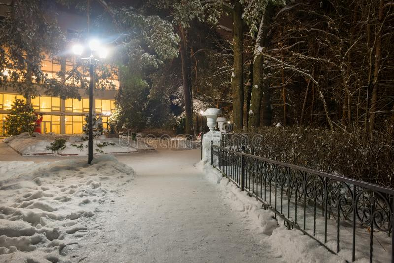 At night in the winter park. Places to walk in the winter park on a cold snowy late evening stock photography