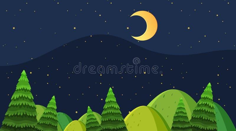 Night wood background scene vector illustration