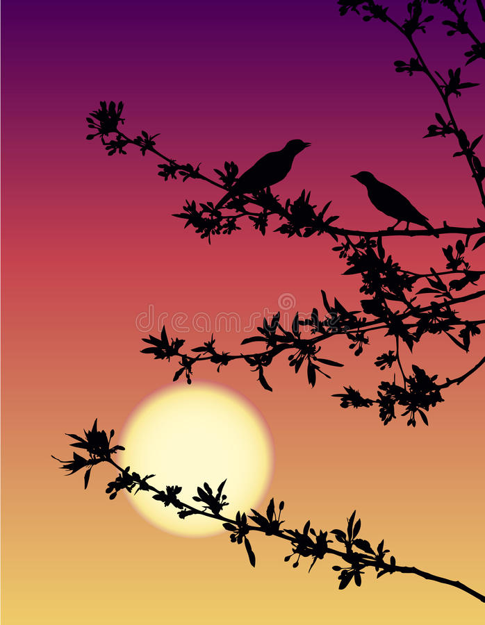 Download Nightingales at sunset stock vector. Image of blowing - 14057272