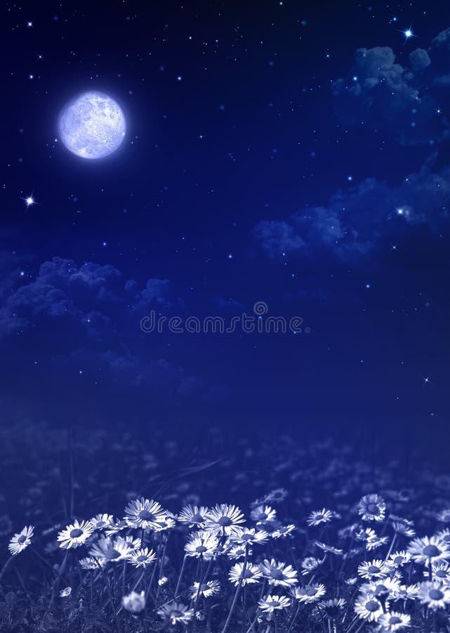 Nightly himmel, naturlig bakgrund royaltyfri bild