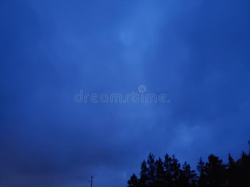The nights sky in summer. Evergreen, trees royalty free stock photography