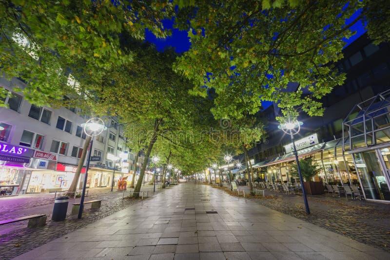 Nightscape mit Bäumen und Lichtern lizenzfreies stockfoto