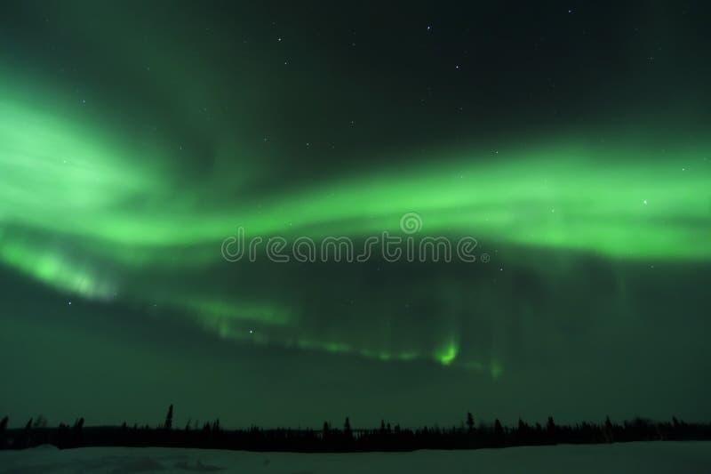 Nightsky si è acceso con l'aurora borealis immagine stock libera da diritti
