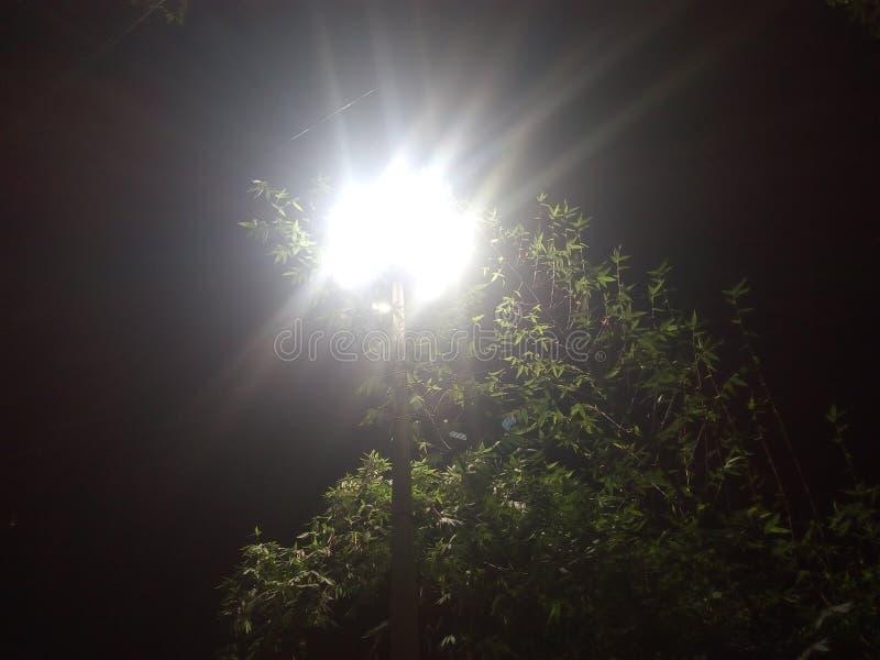 nighttime royaltyfria foton