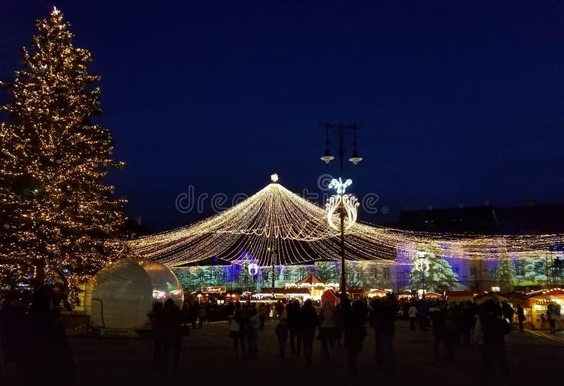 Nighttime Christmas decoration in the city. Nighttime Christmas lights decoration in the city of Timisoara, Romania royalty free stock photo