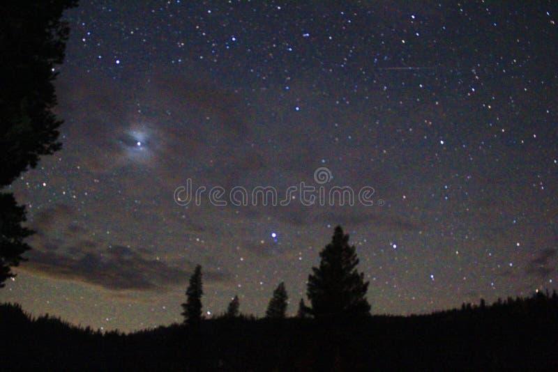 Nighttime fotografia gwiazdy, drzewa i g?ry, zdjęcie royalty free