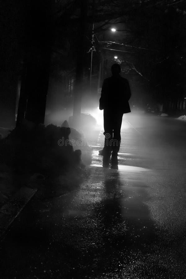 Nightwalk fotografie stock