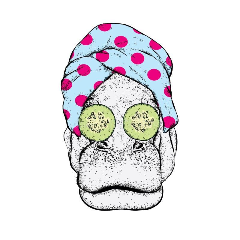 Nijlpaard in een handdoek en met komkommer op het gezicht Vector illustratie Schoonheid en kuuroordbehandelingen Manier & Stijl stock illustratie