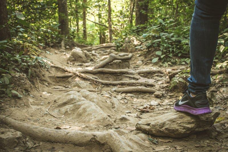 Nike που περπατά την περιπέτεια βουνών, εθνικό πάρκο Ramkhamhaeng της Ταϊλάνδης στοκ φωτογραφία με δικαίωμα ελεύθερης χρήσης