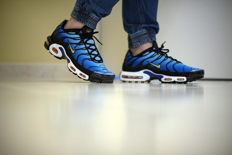 Nike Air Max Plus TN Hyperblue royalty free stock image