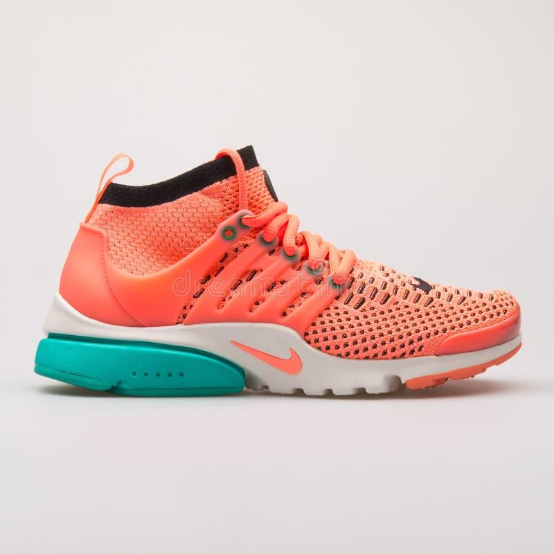 Nike Wietrzy Presto Flyknit zieleni i menchii tenisówka Ultra fotografia stock