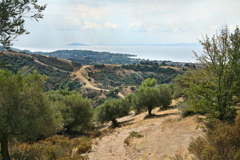 Nikiti, Sithonia, Chalkidiki Peninsula, Greece, Europe, large. Panorama cityscape with a sea, mountains, olive trees and hills stock photos