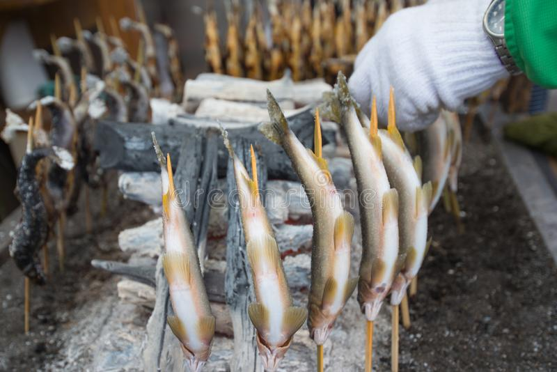 Charcoal grilled Ayu fish with salt. Traditional Japanese street food at Kegon waterfall in Nikko, Japan royalty free stock photos