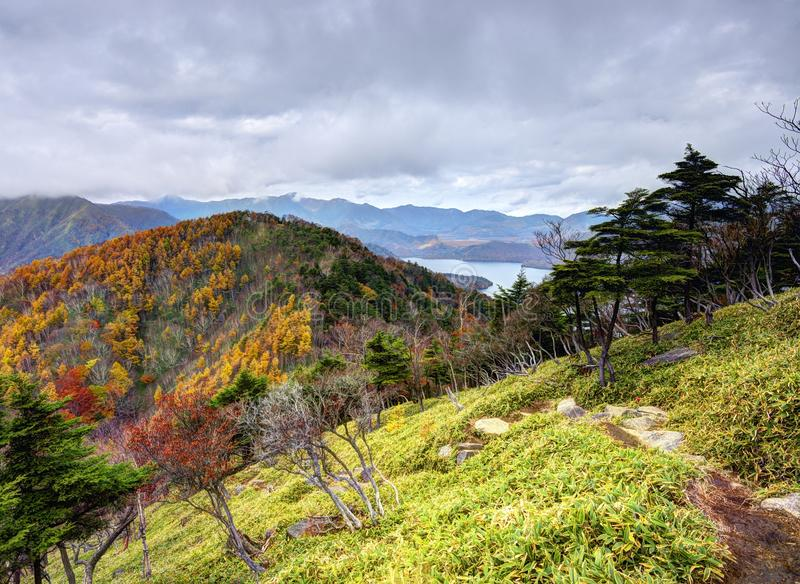 Nikko nationalpark royaltyfri fotografi