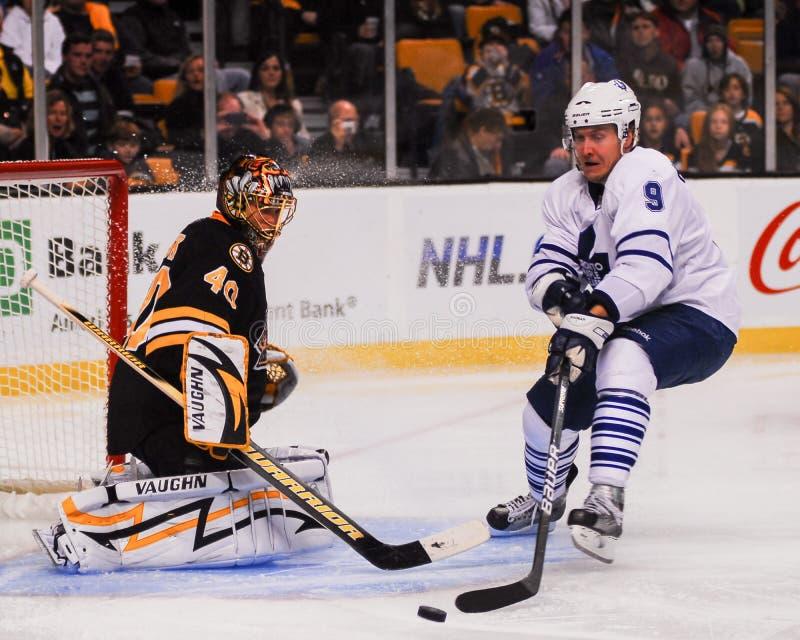 Niklas Hagman, Toronto Maple Leafs photographie stock libre de droits