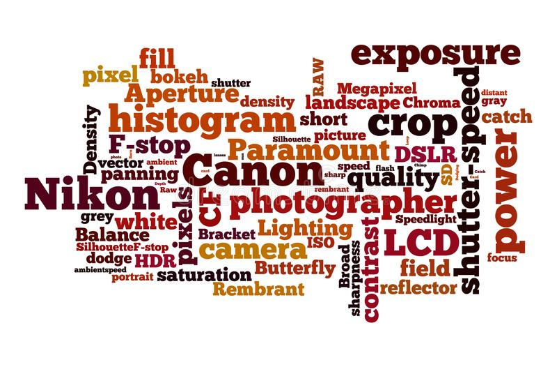 Nikon Vs kanon arkivbilder