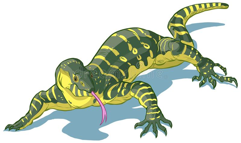 Nile Monitor Lizard Vector clip art cartoon illustration. Vector clip art cartoon illustration of a Nile Monitor Lizard with its tongue out vector illustration