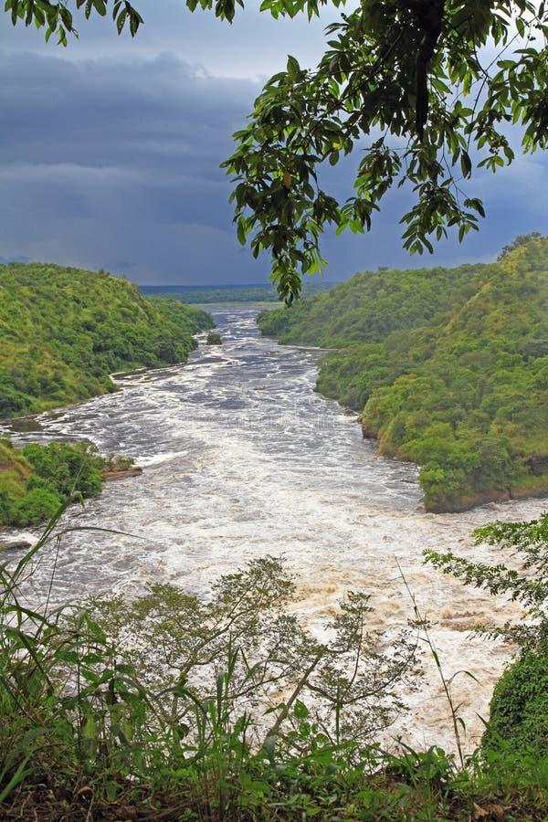 Nile River Downstream das quedas de Murchsion fotografia de stock royalty free