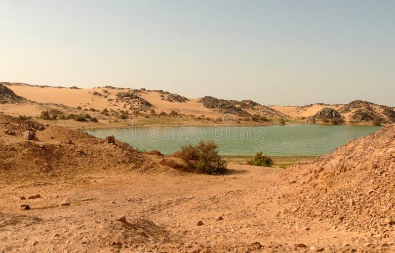 Nilen som flödar till och med den Sahara öknen. royaltyfri fotografi