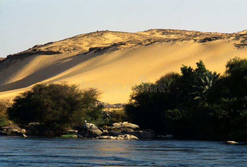 Nilo et le désert photo stock