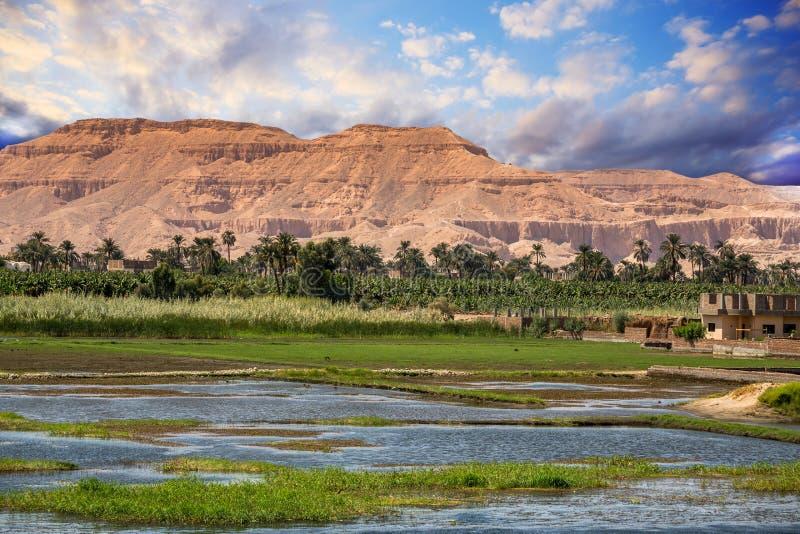 Nilo nell'Egitto fotografia stock libera da diritti