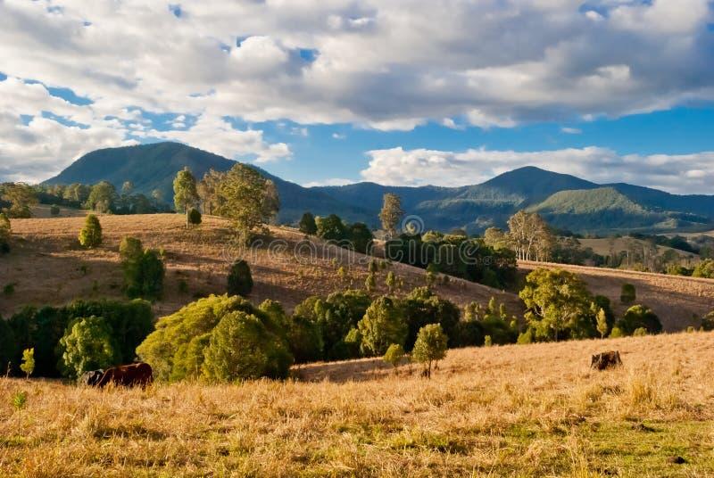 Nimbin, Australia, wiejski krajobraz obrazy royalty free