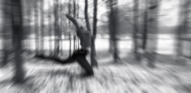 Download Nimfy drewna zdjęcie stock. Obraz złożonej z tancerz, śnieg - 137704