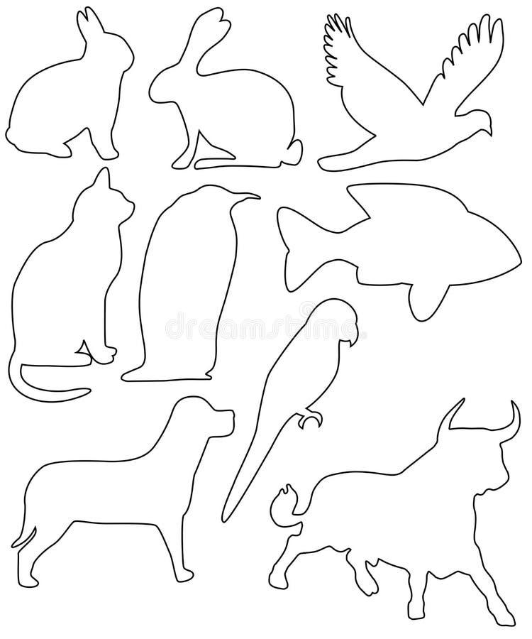Nine animals stock images