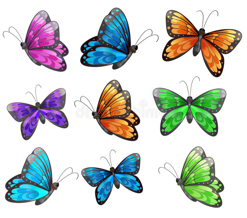 Nine colorful butterflies. Illustration of the nine colorful butterflies on a white background stock illustration