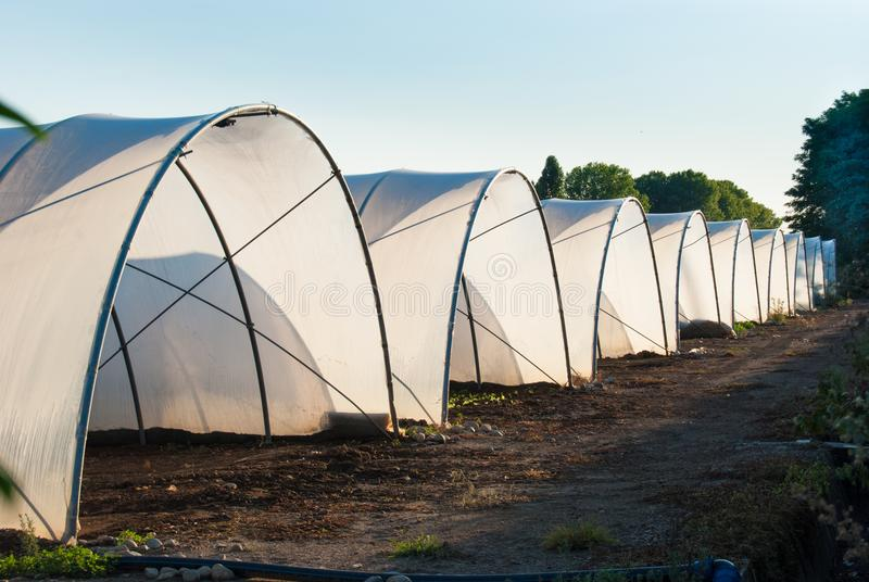 Nine covered greenhouses royalty free stock photo