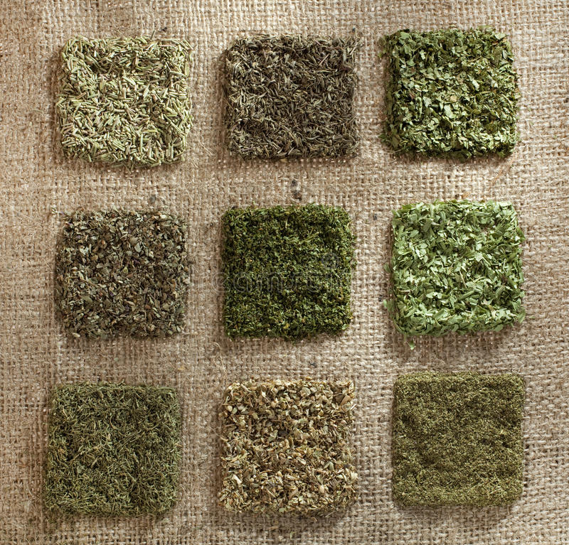 Nine dried herb piles on jute hessian backdrop. Rosemary, thyme, coriander leaves, basil, parsley, tarragon, dill, oregano, mint stock image