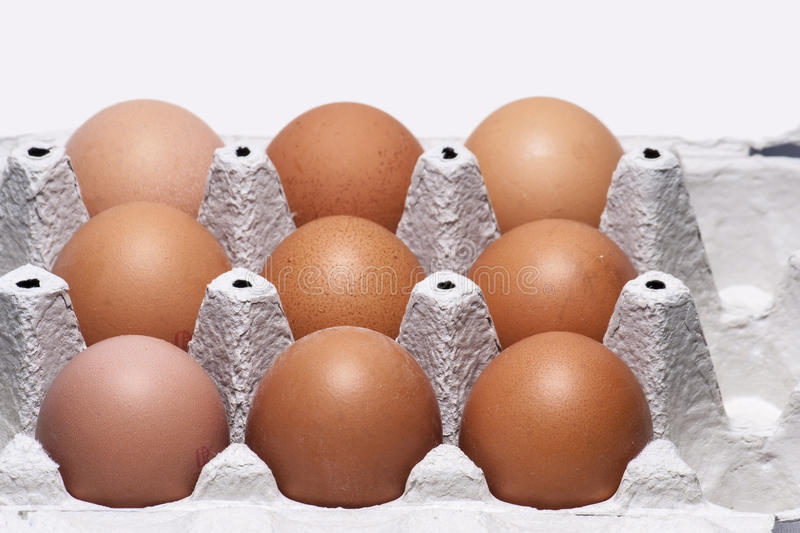 Nine eggs. In a paper holder royalty free stock photo
