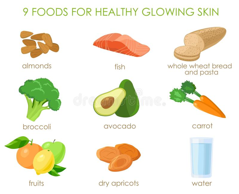 Nine foods for healthy skin. Vector. 9 foods for healthy glowing skin. Natural vitamines sources. Vector illustration royalty free illustration