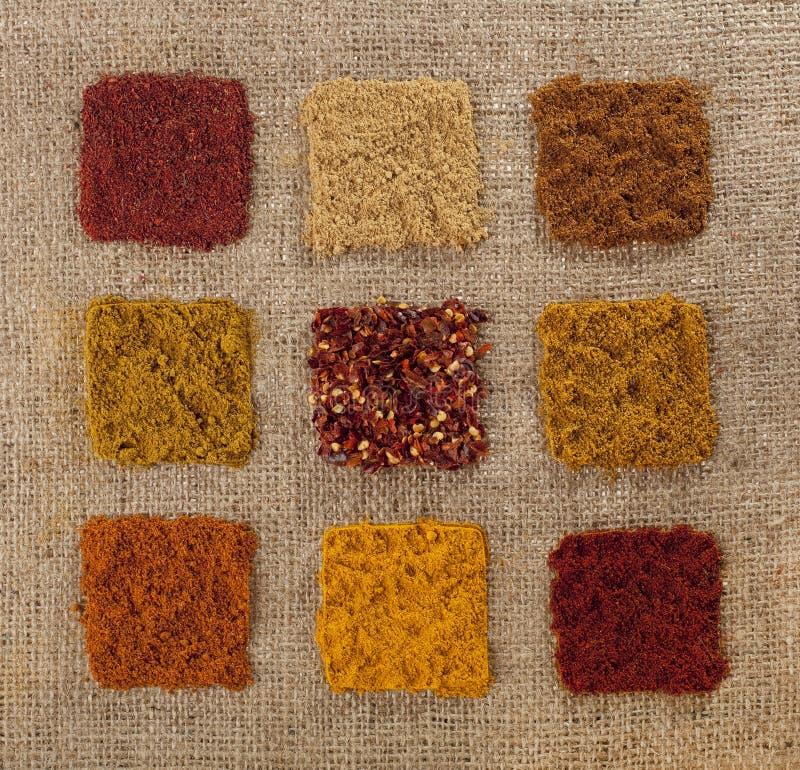 Nine indian spice on hessian backdrop. Tandoori masala, ginger, tikka masala, madras curry, chillies, hot curry, kabab masala, turmeric, paprika stock photography